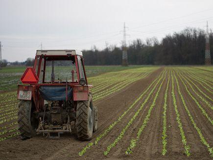Φόροι σε χωράφια και εκτός σχεδίου οικόπεδα