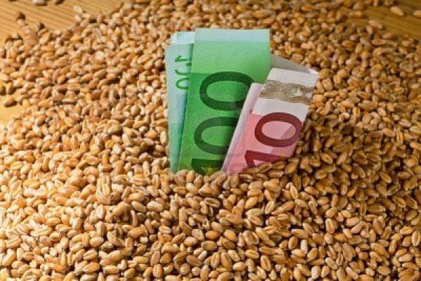Με καλές προϋποθέσεις η νέα χρονιά για τα αγροτικά εμπορεύματα