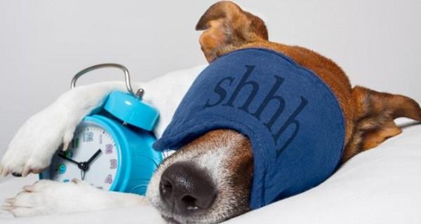 Το smartphone βλάπτει σοβαρά τον ύπνο