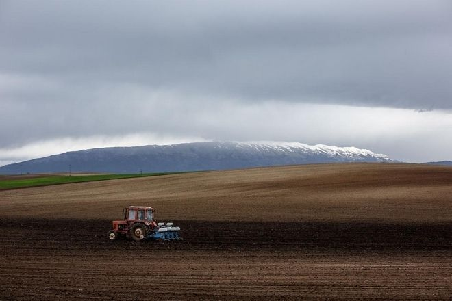 Οι αγροτικές εργασίες για το Νοέμβριο