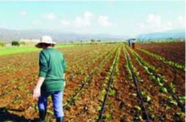 Οι αγροτικές εργασίες για τον Απρίλιο