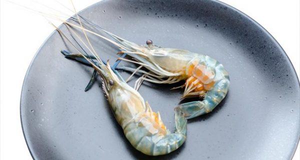 Πώς να ξεχωρίζετε το φαγητό-απάτη στα εστιατόρια
