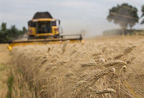 Αίτημα παράτασης για ενστάσεις αγροτών επί δασικών χαρτών