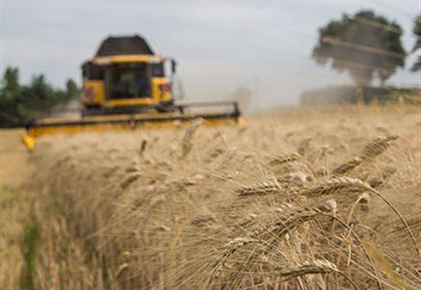 Οι αγροτικές εργασίες για τον Ιούνιο