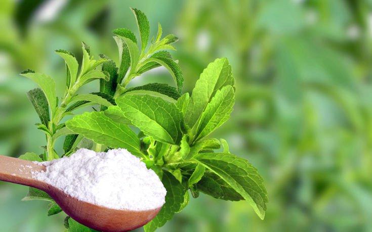 Τελικά η στέβια είναι μια καλή εναλλακτική της ζάχαρης;