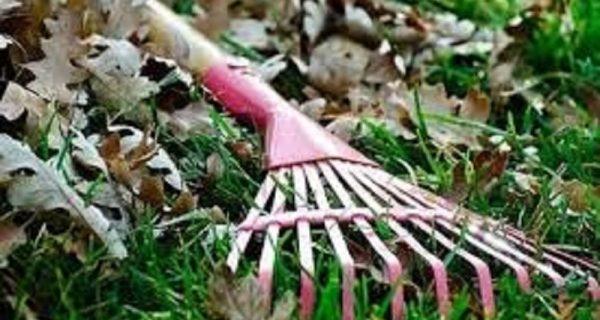 Ενημέρωση για υποχρέωση καθαρισμού ιδιόκτητων οικοπέδων